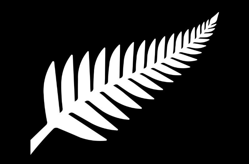 Updated: Was a Silver Fern Flag Rejected for IP Reasons?