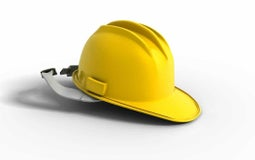 Health and Safety Reform Bill - Delay of Select Committee Report