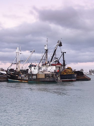 Foreign Charter Fishing Vessels (FCV's):
